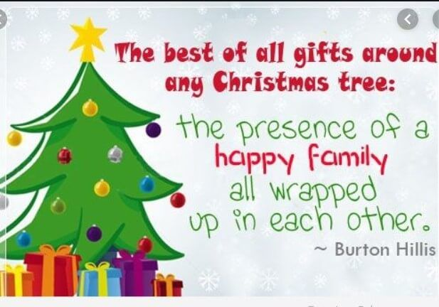 Best 50 Cat And Christmas Tree Quotes Quotes Yard Christmas Tree Quotes Christmas Quotes Inspirational Merry Christmas Quotes Funny