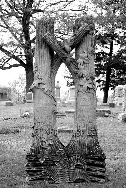 double tree headstone trees in cemetery by Deb Malewski, via Flickr