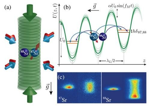 Test of equivalence principle searches for effects of spin-gravity coupling