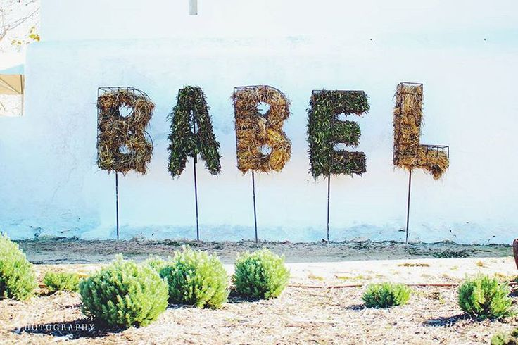 Exploring the beautiful @babylonstoren #creative #words #babel #fave #farm #organic #adventures #explore ☕🍃🍂🌼🌽🌾🌂  Cathé Pienaar Photography. Cape Town, South Africa, but travel all over.   Contact for information on bookings and package.  - http://cathe.co.za/  - info@cathe.co.za  - https://www.facebook.com/CathePienaarPhotography