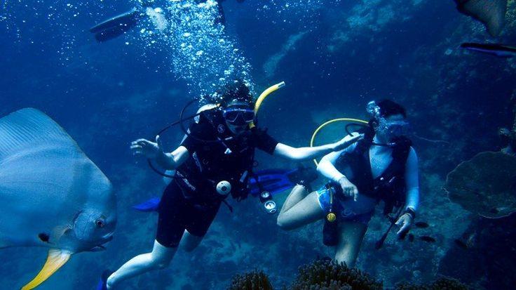 Samui Diving Tour Boat MV Seastar