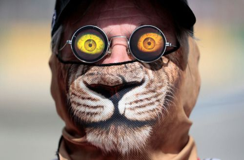 Photos of the day - March 24 2017Race official Graham Warren...  Photos of the day - March 24 2017  Race official Graham Warren wears a cat mask and 3D sunglasses trackside during the first Formula One practice session at the Australian Grand Prix in Melbourne Australia; a protester carries a Palestinian flag as smoke rises from burning tires during clashes with Israeli troops in al-Mughayyir village near the West Bank city of Ramallah; House Energy and Commerce Committee Chairman Rep. Greg…