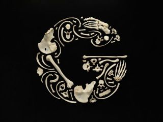 """Such an elegant letter """"g""""...and it's made out of bones. Real, human bones. (D'em Bones by Francois Robert)"""