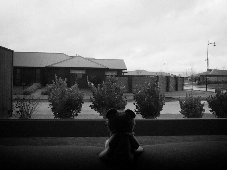 Rainy day adventures:pt1