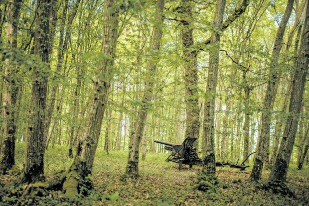 Belleau Wood Tomas Munita para The New York Times / RESQUÍCIO Peça de campanha no bosque de Belleau, onde fuzileiros navais dos EUA atacaram alemães entrincheirados até vencerem a batalha