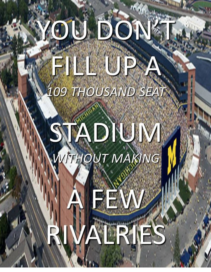 University of Michigan Wolverines  - You don't fill up a 100,000 seat football stadium without making a few rivalries
