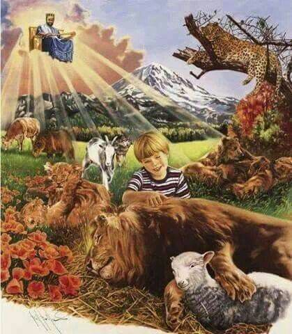 Jehovah Gods new Kingdom ( being ruled by his Son, Jesus Christ our wonderful n Loving King )