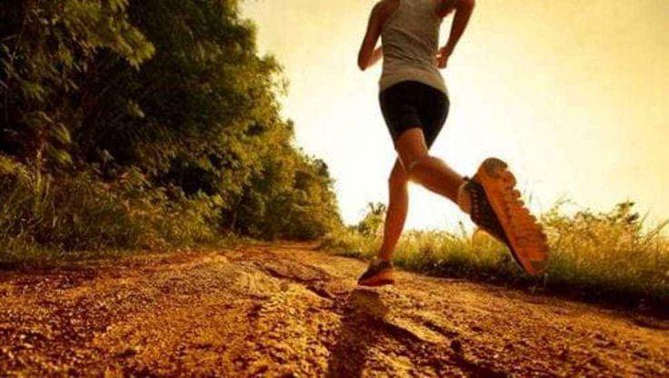 Sport unora di corsa allunga la vita di sette ore Una ricerca davvero particolare con risultati altrettanto curiosi. Un team di studiosi della Iowa St corsa miglioramento della vita