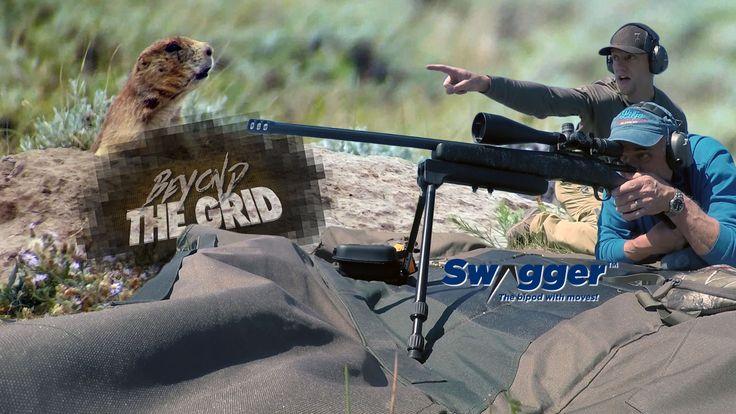 Beyond The Grid: Prairie Dog Extavaganza