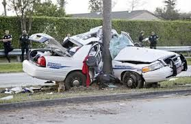 Delray Beach Fire Department Car Seat