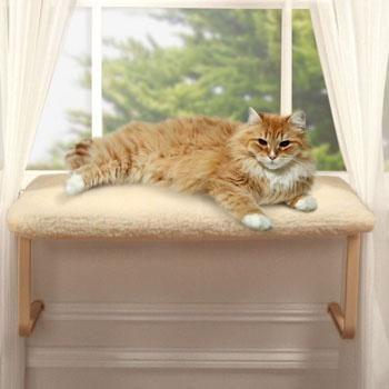 Https Www Pinterest Com Explore Cat Window Perch