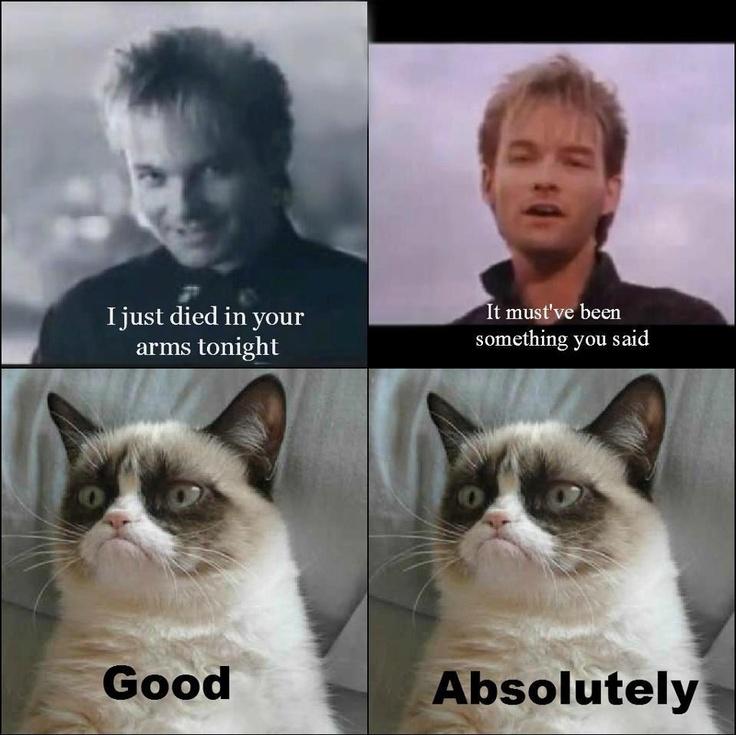 133 best Grumpier Still images on Pinterest | Grumpy cat ...
