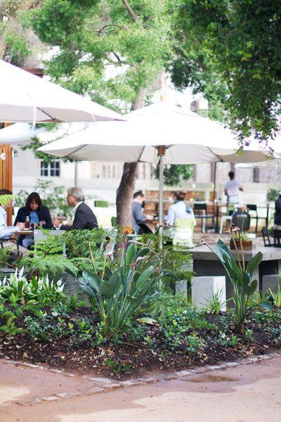 The Company's Garden Tearoom / Cape Town