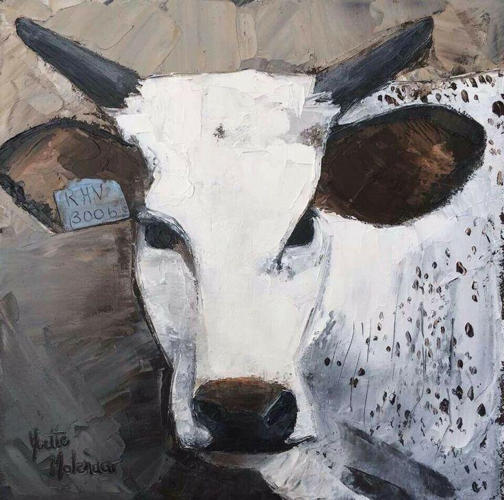 Stella - the Nguni Calf