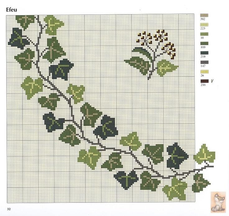 ivy chart