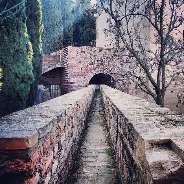 Off the beaten path at the famed Alhambra castle in Granada, #Spain.    Photo courtesy of jhlafever on Instagram