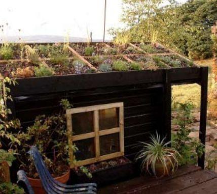 1000+ Idei Despre Extensive Dachbegrünung Pe Pinterest | Patrick ... Intensive Extensive Dachbegrunung Nachhaltig