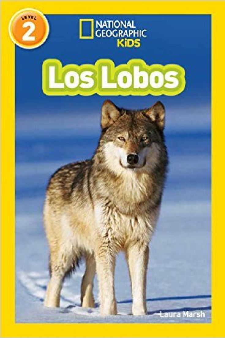 Los Lobos! Teach Your Children To Read In #spanish With This Exciting Tale  About