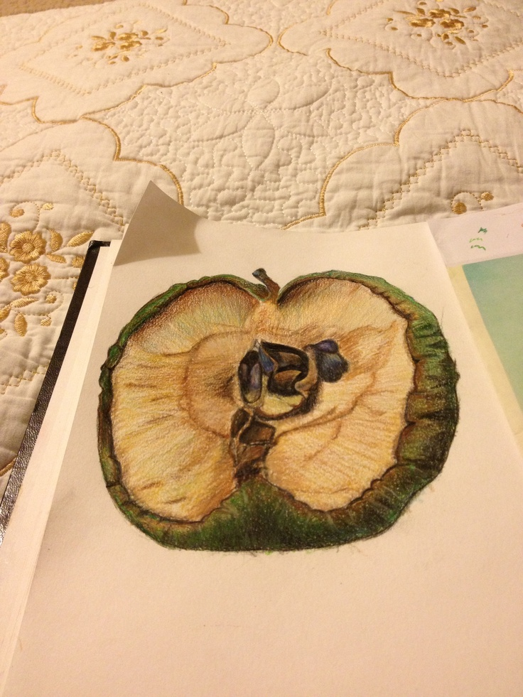 this is a colour pencil study of a rotting apple. i spent about 5 hours on it, i recorded an apple for a week taking pictures of it everyday. i was inspired by Sam Taylor Wood who produces short films of rotting fruit/food.