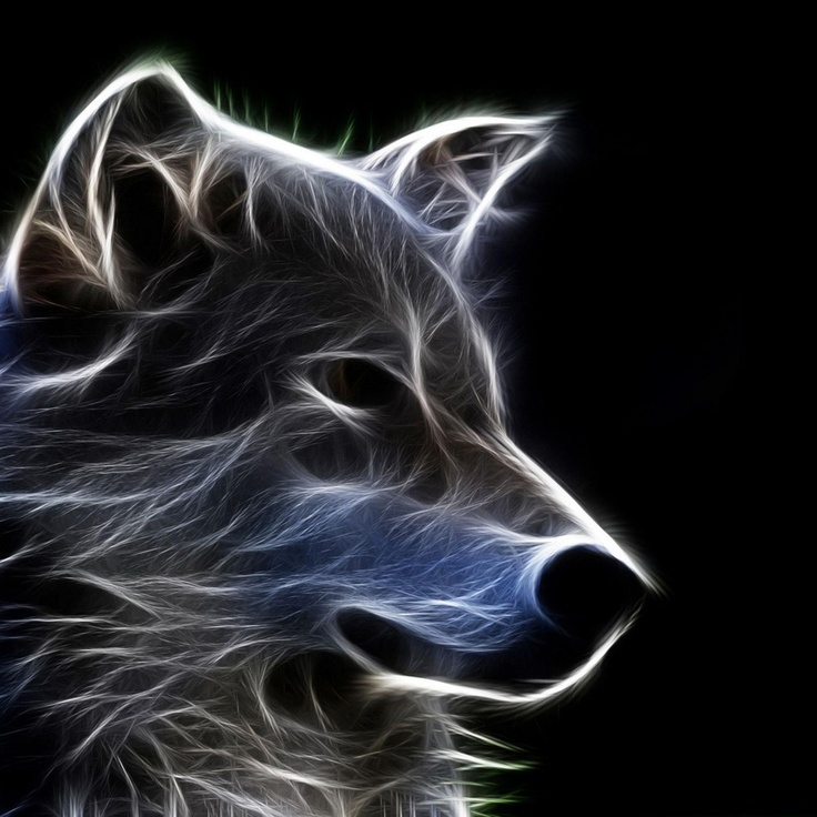 Wolf Iphone Wallpaper: 152 Best Zedge Stuff Images On Pinterest