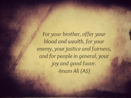For your brother, offer your blood and wealth, for your enemy, your justice and fairness, and for people in general, your joy and good favor. -Hazrat Ali (AS)