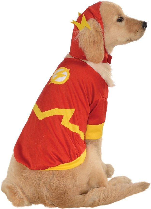 "This adorable doggy Flash costume for the fastest pup you know. | 29 Products You Need If You're Obsessed With ""The Flash"""