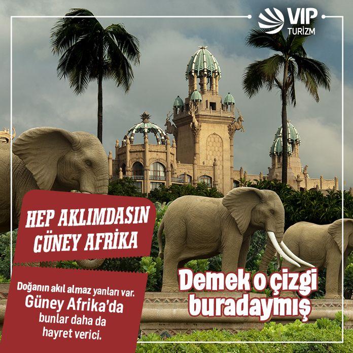 VIP Turizm'in konforlu turu ile 10 boyunca Güney Afrika'nın keyfini çıkaracak, çölde fil gezisi yapacak, safari macerasına katılacak, Güney Afrika'nın 'büyük 5'lisi fil, bufalo, aslan, gergedan ve leoparı vahşi doğada bulmaya çalışacağız. Eylül'de bizimle Güney Afrika'ya gelmek isterseniz, ayrıntılar burada http://www.vip.com.tr/yurtdisi-turlari/guney-afrika-2014-eylul-turu