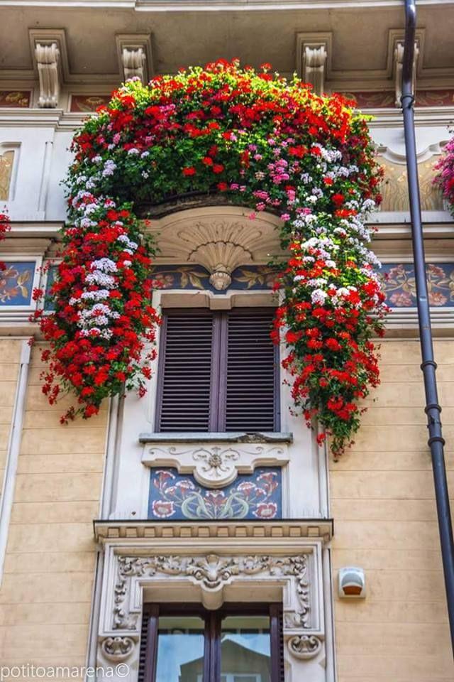 Torino- balcone fiorito in Via San Secondo