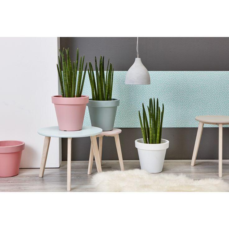 Deze kunststof potten staan zowel binnen als buiten leuk! #bloempot #tuin #lente #kleur #KwantumLente