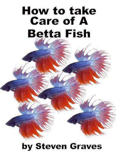 1000 images about betta fish on pinterest for How to care for a betta fish