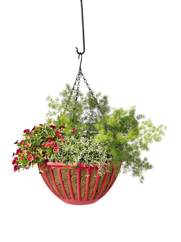 How To Make Flower Baskets For Hanging : Best flower baskets ideas on flowers for