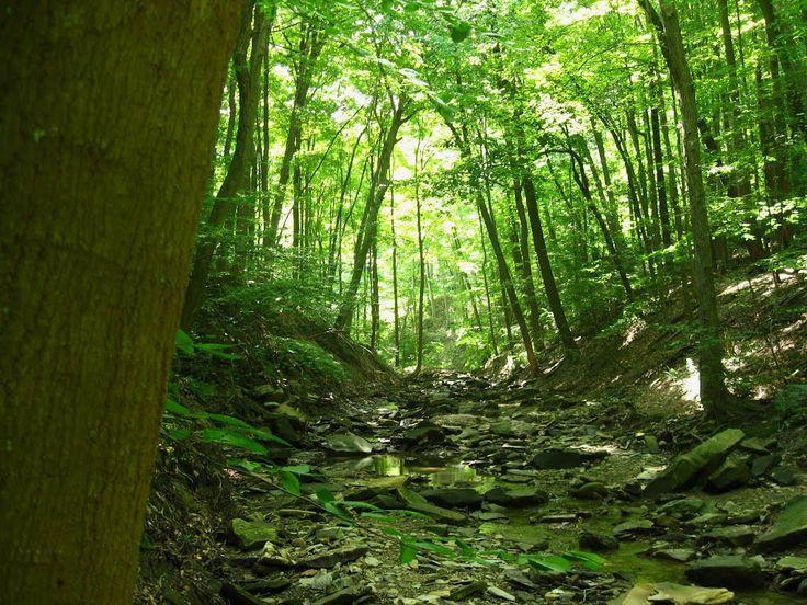 Green... Brecksville Ohio