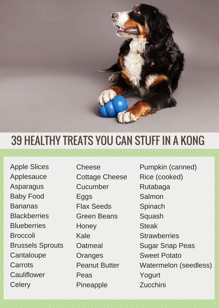 Looking for an easy way to keep your dog busy? Here's 39 healthy snacks to stuff in a Kong