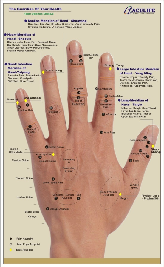 REFLEXOLOGY HAND CHART - Tips