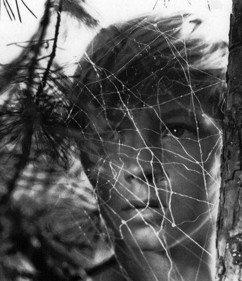"""""""Ivan's Childhood"""" 1962"""