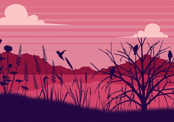 Illustration of Sea Oats Pink Background