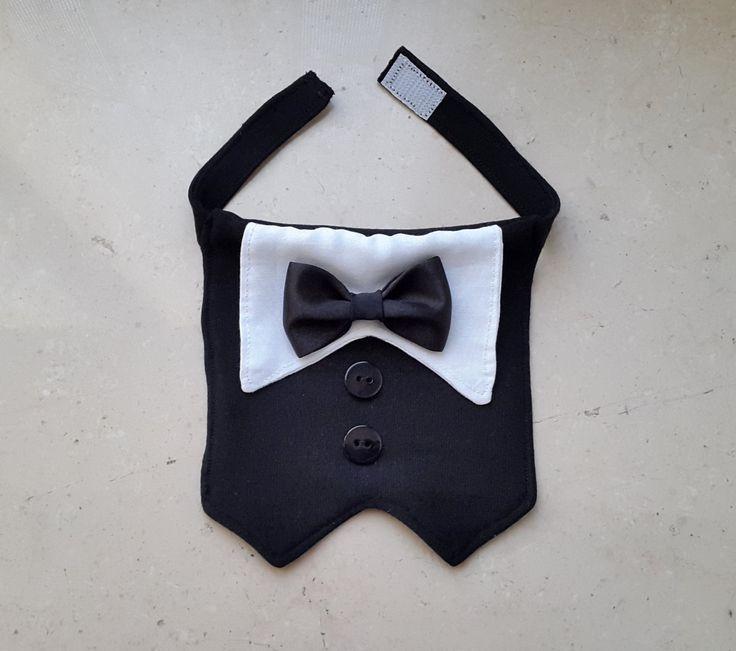 Collare Smoking per Cane per occasioni formali con la scelta di Colore del Papillon di PinkBau su Etsy https://www.etsy.com/it/listing/252884354/collare-smoking-per-cane-per-occasioni