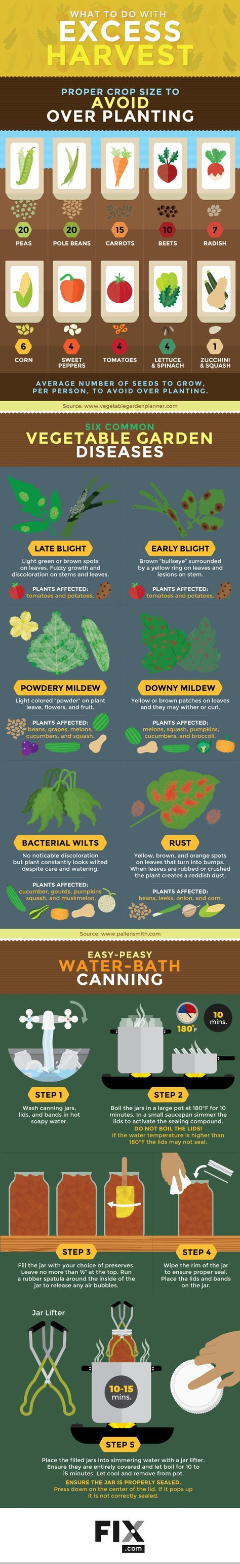 best garden images on pinterest vegetable garden gardening and
