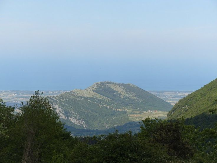 Monte Vesalo