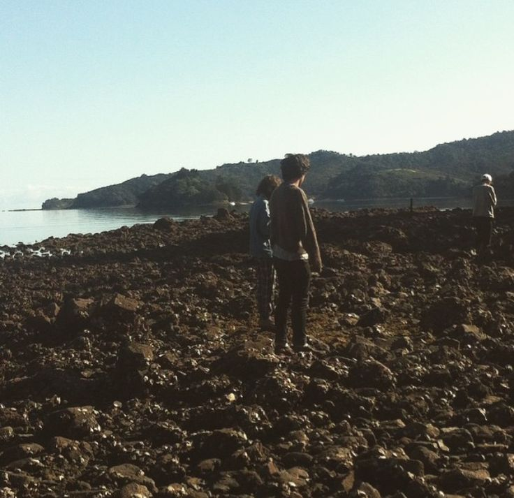 Oyster hunting in the Coromandel, NZ