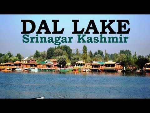 INCREDIBLE DAL LAKE - SRINAGAR KASHMIR || डल झील कश्मीर || Kashmir Tourism