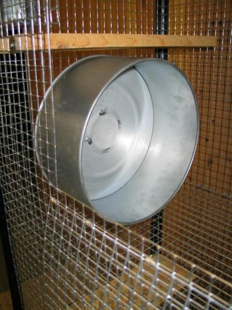 Metal degu wheel from John Hopewell in the UK £55 but often out of stock! :(