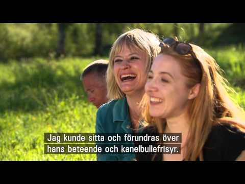 Allt för Sverige 2014 - season 4, episode 1 (HD, subs) - YouTube