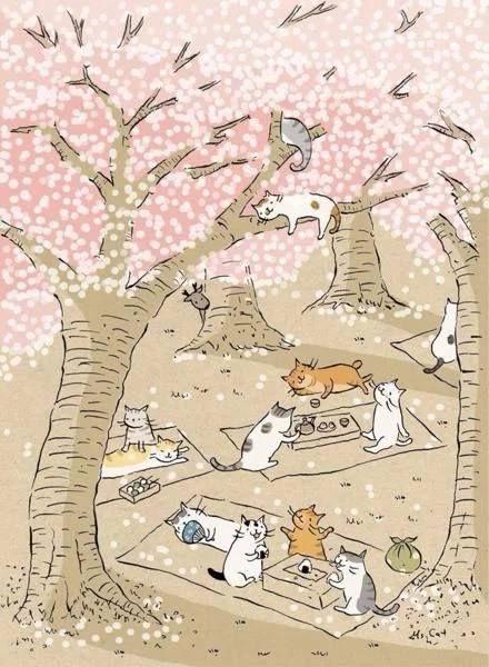 picnic cats/  cherry blossom