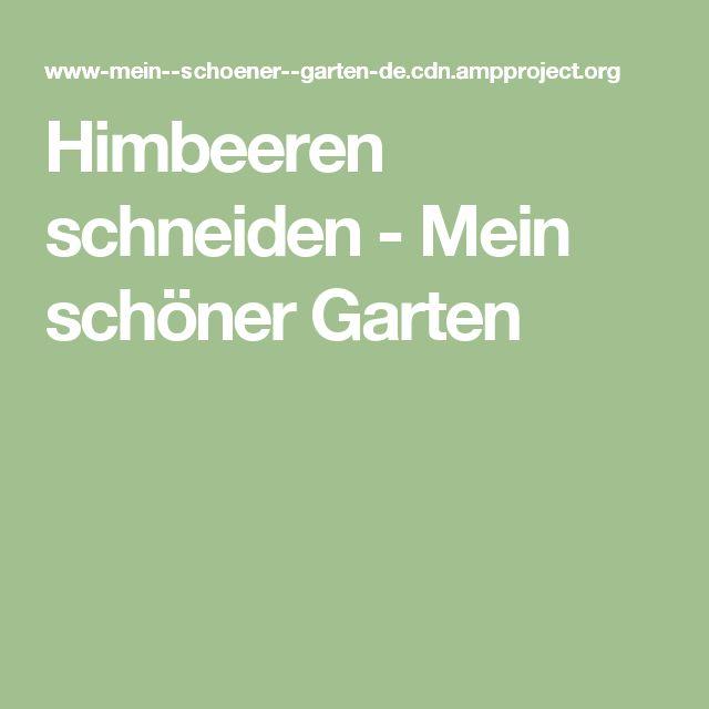 Himbeeren schneiden - Mein schöner Garten