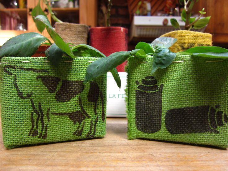 Nuevas plantas y nuevos diseños de plantas con maceteros reciclados.
