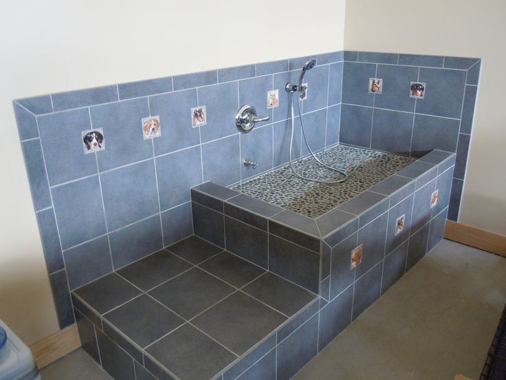 13 best images about dog bath and shower design areas on for A bath and a biscuit grooming salon