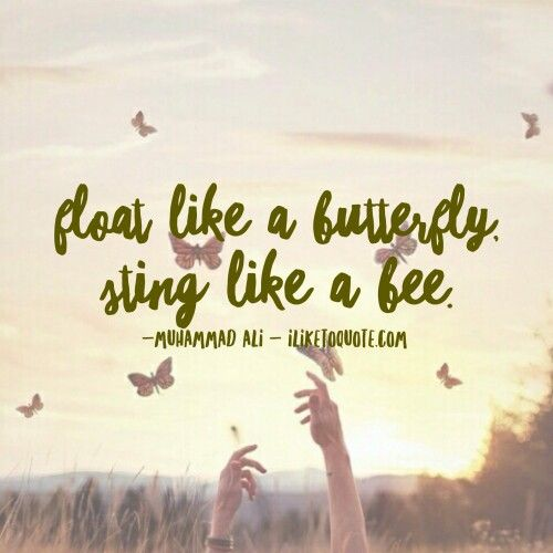 Motivational Inspirational Quotes: Best 25+ Butterfly Quotes Ideas On Pinterest