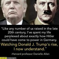 I hate to use this comparison but the simple fact is both Donald Trump and Hitler used similar tactics to rise into power including using scare tactics and racism to convince the people that they are the right leader