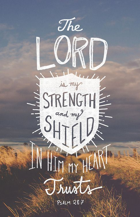 The LORD is my strength and my shield; in him my heart trusts, and I am helped; my heart exults, and with my song I give thanks to him.(Psalm 28:7 ESV)